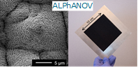 Fig.2 Alphanov Article Mouchetis